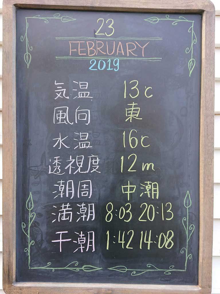 井田ダイビングセンター 2019年2月23日の海況情報